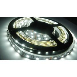 LED páska SMD5050, studená bílá, 12V, 1m, 60 LED/m