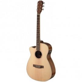 James Neligan ASY-ACE LH, elektroakustická kytara typu Auditorium, levoruká