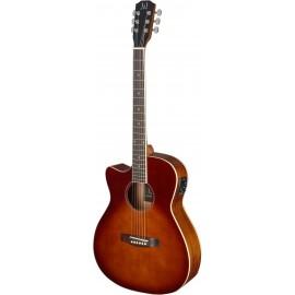 James Neligan BES-ACE DCB LH, elektroakustická kytara typu Auditorium, levoruká