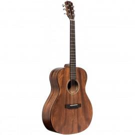 James Neligan DOV-A, akustická kytara typu Auditorium