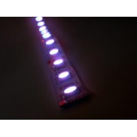 LED páska SMD5050, RGB, 12V, 1m, 60 LED/m