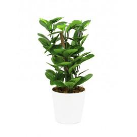 Zelený list v keramickém květináči, 30 cm