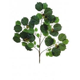 Listí z lísky s ořechy, 6ks